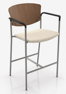 Bariatric Stool Wooden back Arms