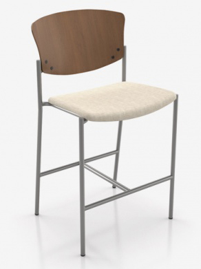 Bariatric Stool Wooden Back