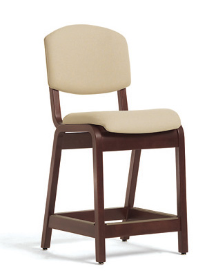 Bariatric bar Stool
